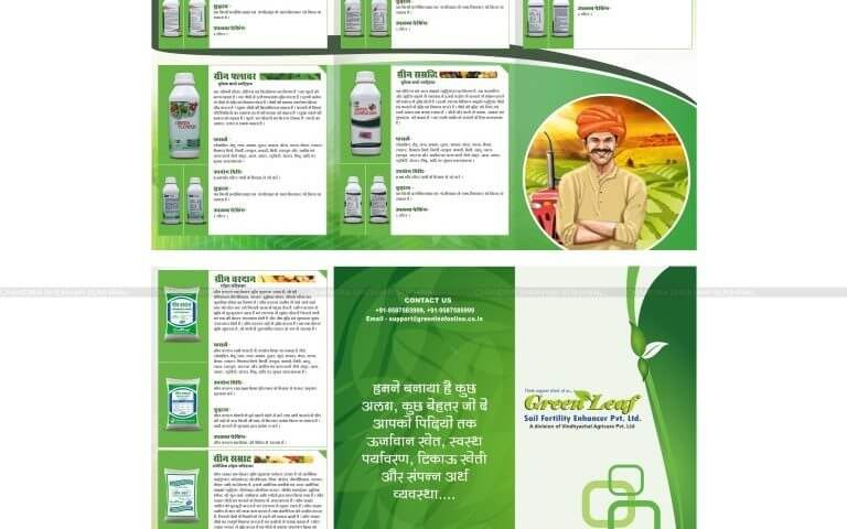 Brochure designer in udaipur